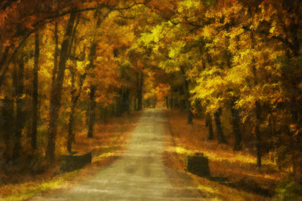 Photograph - Autumn Road by Mick Burkey