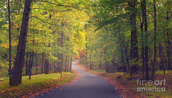 Photograph - Autumn Road by Rima Biswas