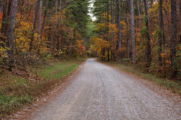 Photograph - Autumn Road by Sandy Keeton