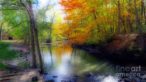 Wall Art - Photograph - Autumn Serenity  by Kay Novy