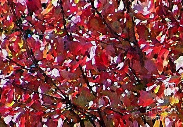 Photograph - Autumn Sparkle by Steven Huszar