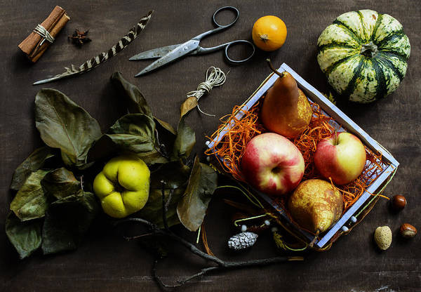 Quince Photograph - Autumn Still Life by Aniko Hobel