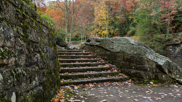 Photograph - Autumn Stone Staircase by Lori Coleman