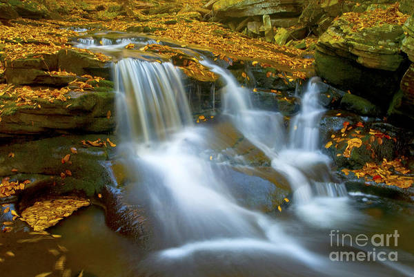 Photograph - Autumn Stream Falls by Paul W Faust -  Impressions of Light