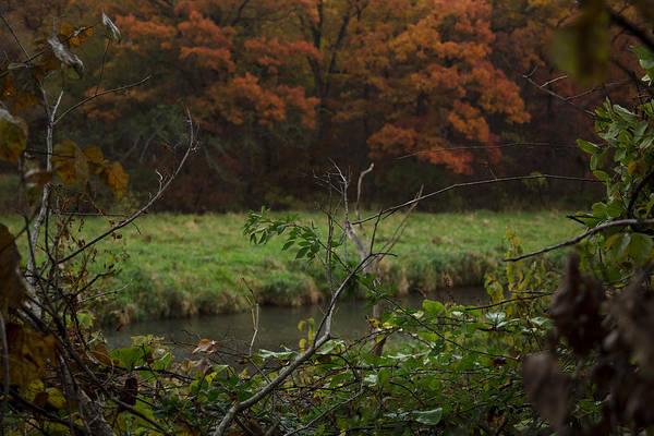 Photograph - Autumn Stream II by Ryan Heffron