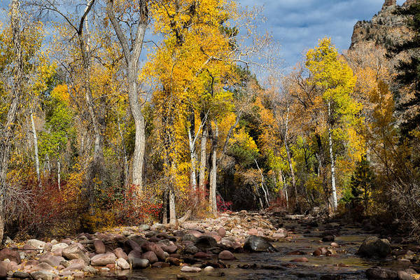Vernal Fall Photograph - Autumn Stream In Dry Fork Canyon by Kathleen Bishop
