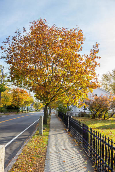 Photograph - Autumn Stroll In Mystic by Kirkodd Photography Of New England