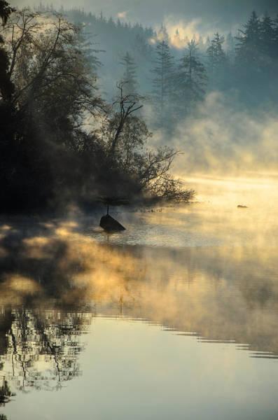 Photograph - Autumn Sunrise Mist Fairy Lake  by Roxy Hurtubise