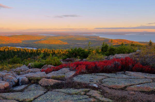 Wall Art - Photograph - Cadillac Mountain Autumn Sunrise by Stephen  Vecchiotti