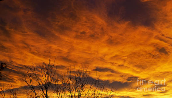 Photograph - Autumn Sunset by Elle Arden Walby