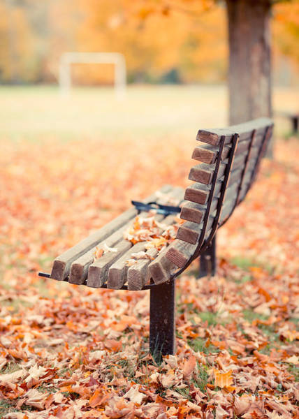 Park Bench Photograph - Autumn The Years Last Loveliest Smile by Edward Fielding