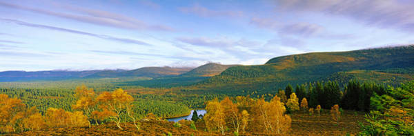Cairngorms Photograph - Autumn Trees At Loch An Eilein by Panoramic Images