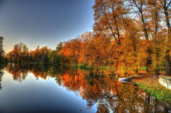 Autumn Trees Over A Pond In Arkadia Park In Poland Art Print