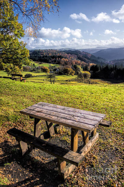 Coed Photograph - Autumn View by Adrian Evans