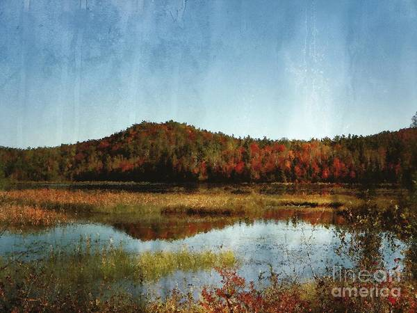 Wall Art - Photograph - Autumn View Of Lake And Trees by Aimelle