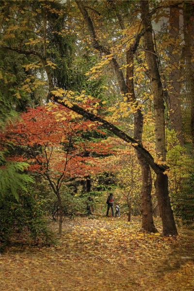 Bracing Photograph - Autumn Walk by Diane Schuster