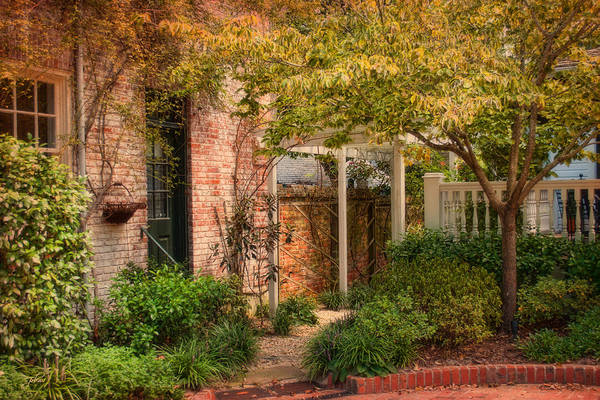 Photograph - Autumn Walk In Pinehurst by Paulette B Wright