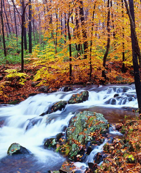 Waters Edge Photograph - Autumn Waterfall In New York P by Ron thomas
