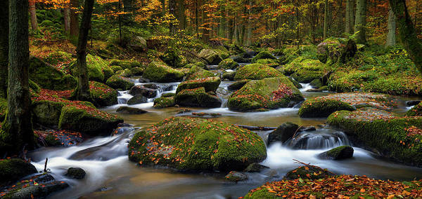 Water Fall Photograph - Autumn Waters by Norbert Maier