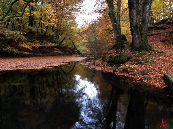 Photograph - Autumn Weather Denmark by Colette V Hera  Guggenheim