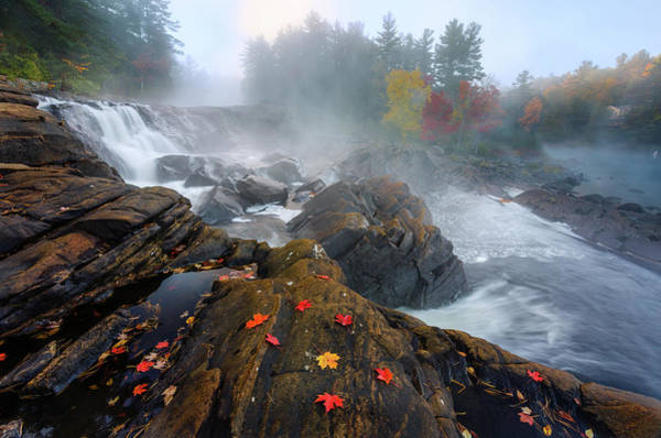 Water Fall Photograph - Autumn by Yi Jiang