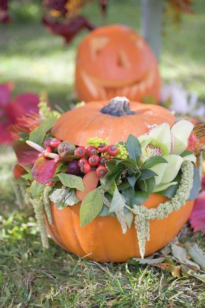 Cucurbits Photograph - Autumnal Garden Decoration With Pumpkins And Flowers by Foodcollection