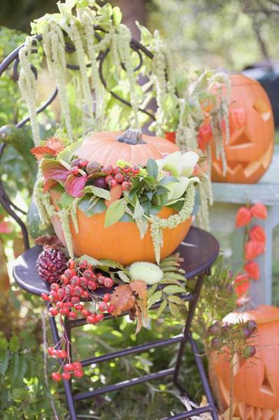 Cucurbits Photograph - Autumnal Garden Decoration With Pumpkins by Foodcollection