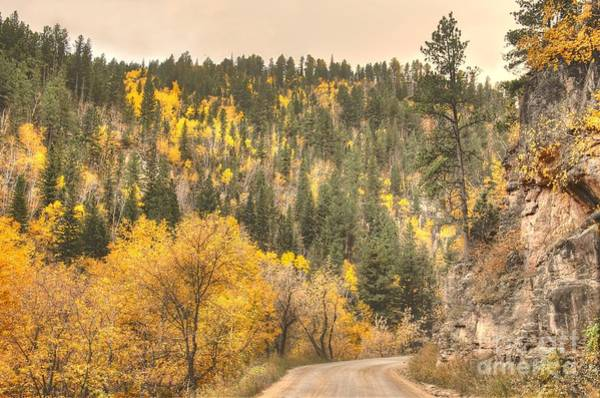 Photograph - Autumnmobile1 by Anthony Wilkening