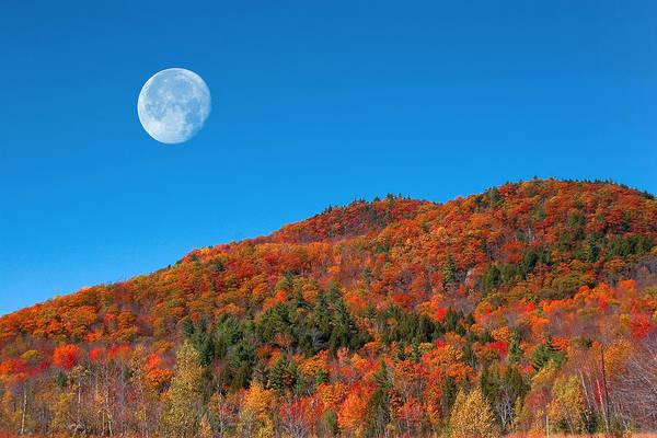 Photograph - Autumn's Big Moon  by Larry Landolfi