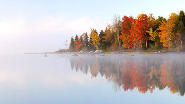 Wall Art - Photograph - Autumn's Color Show by Patrick Downey