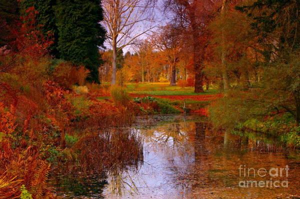 Autumn's Golden Colours Art Print