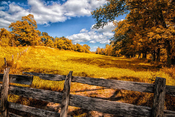 Photograph - Autumns Pasture by Bob Orsillo