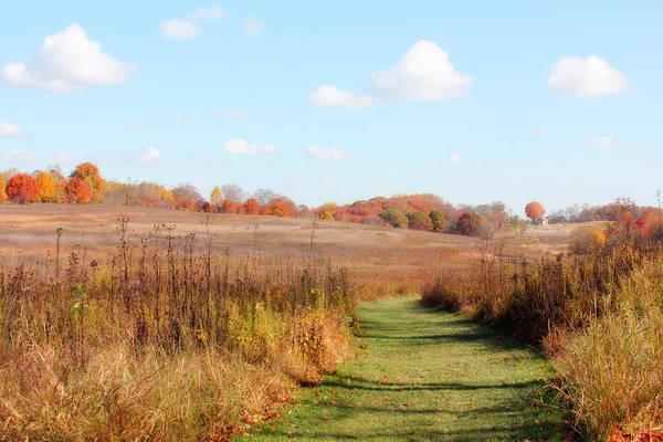 Photograph - Autumn's Path by Trina  Ansel