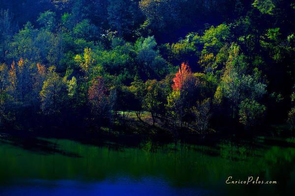 Photograph - Autunno Alba Sul Lago - Autumn Lake Dawn 9749 by Enrico Pelos