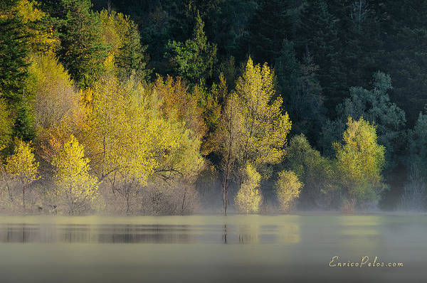 Photograph - Autunno Alba Sul Lago - Autumn Lake Dawn 9681 by Enrico Pelos