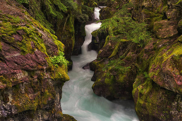 Moss Green Photograph - Avalanche Falls by Mark Kiver