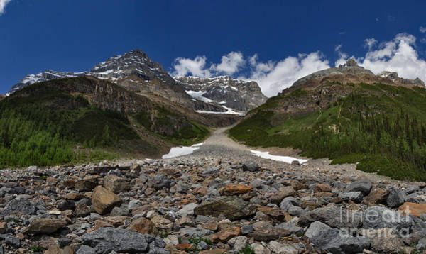 Photograph - Avalanche Path by Charles Kozierok
