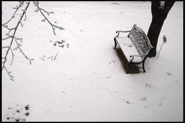Photograph - Awaiting Spring by KG Thienemann