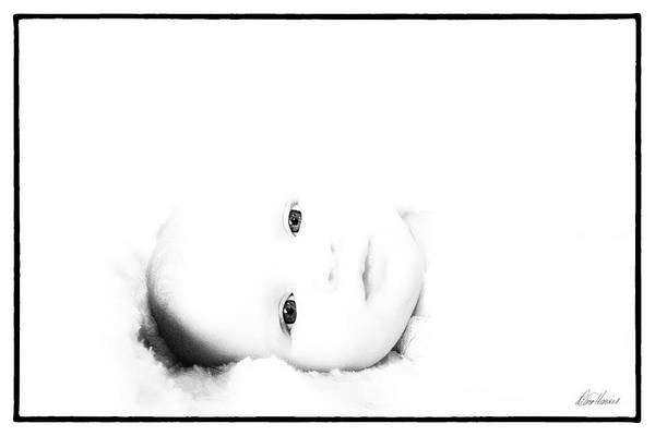 Photograph - Awakening by Diana Haronis