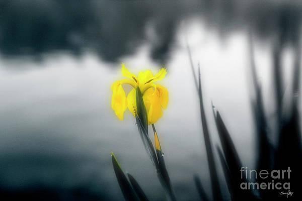 Fleur De Lis Photograph - Awakening by Scott Pellegrin