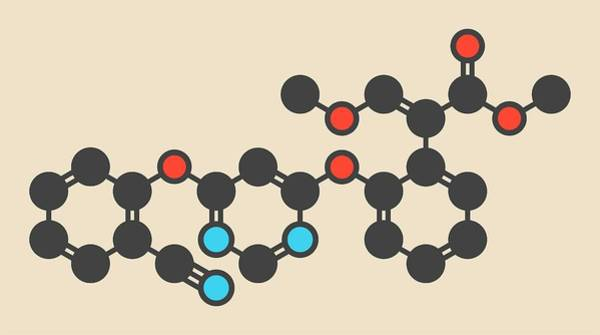 Wall Art - Photograph - Azoxystrobin Fungicide Molecule by Molekuul/science Photo Library