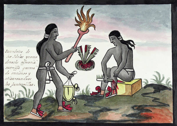 Aztec Photograph - Aztec Blood Sacrifices by Library Of Congress