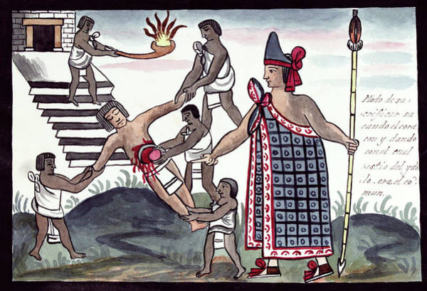 Aztec Photograph - Aztec Human Sacrifice by Library Of Congress
