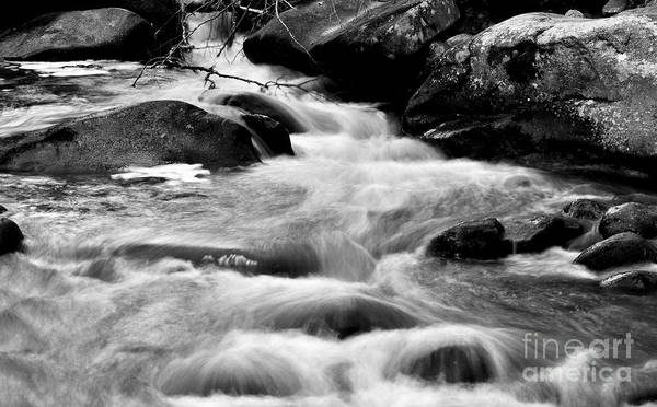 Photograph - Babbling Brook In Motion Black And White by Staci Bigelow