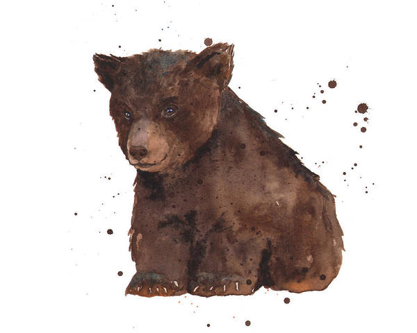 Wall Art - Painting - Baby Bear by Alison Fennell