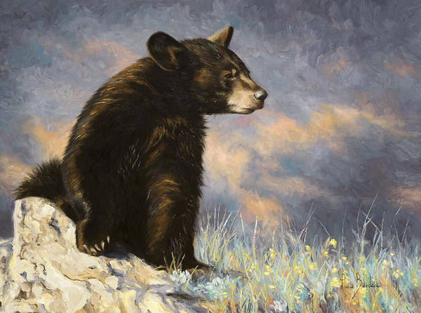 Painting - Baby Bear by Lucie Bilodeau