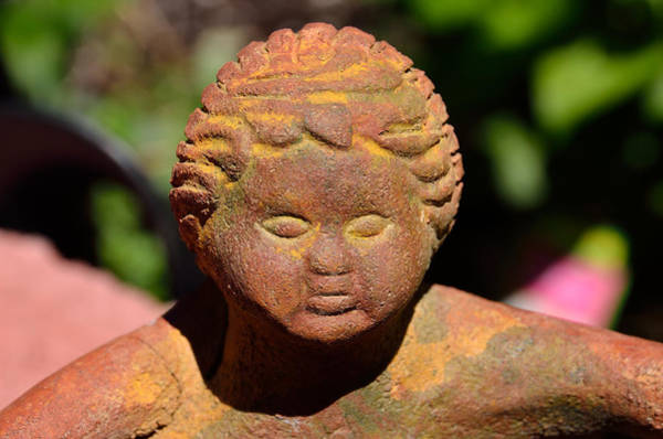 Buddah Photograph - Baby Buddah In Sunlight by William Jobes
