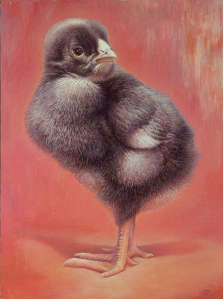 Painting - Baby Chick by Hans Droog