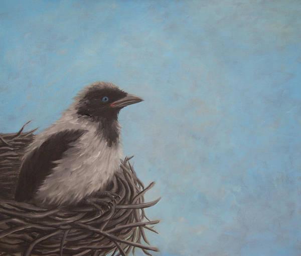 Crows Nest Wall Art - Painting - Baby Crow by Tone Aanderaa