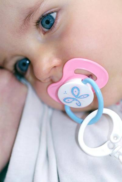 Wall Art - Photograph - Baby Girl Sucking A Dummy by Lea Paterson/science Photo Library